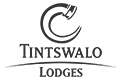 Tintswalo live- Search. Discover. Book